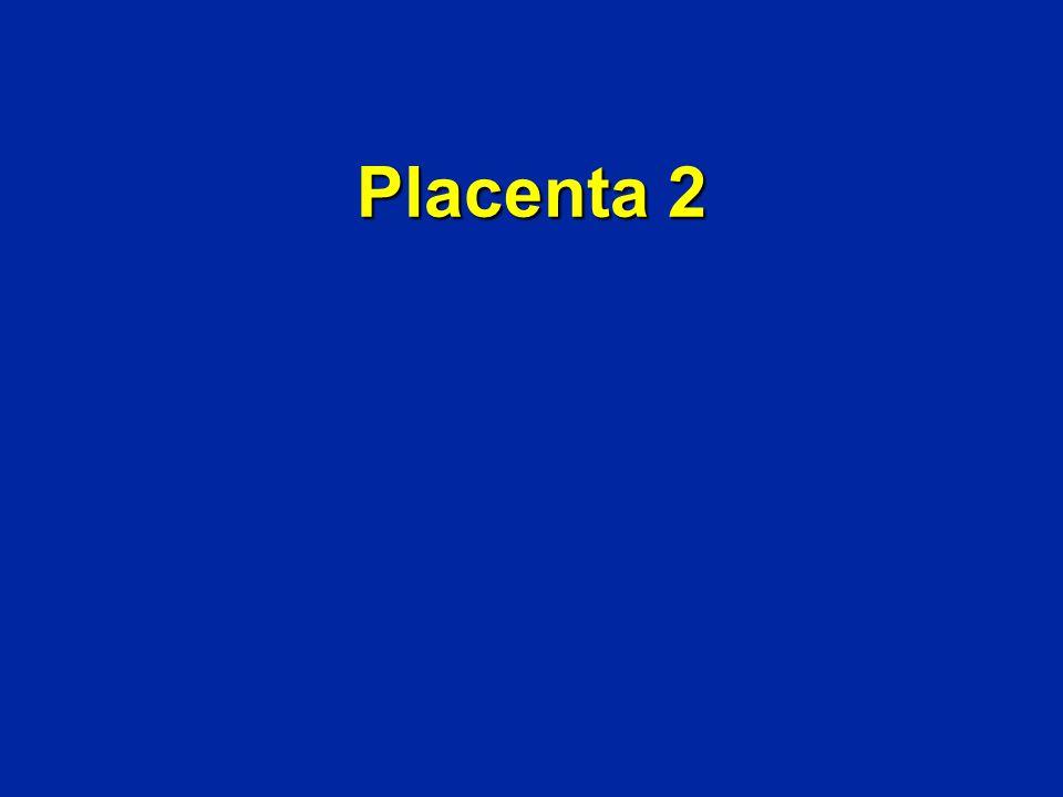 Placenta 2