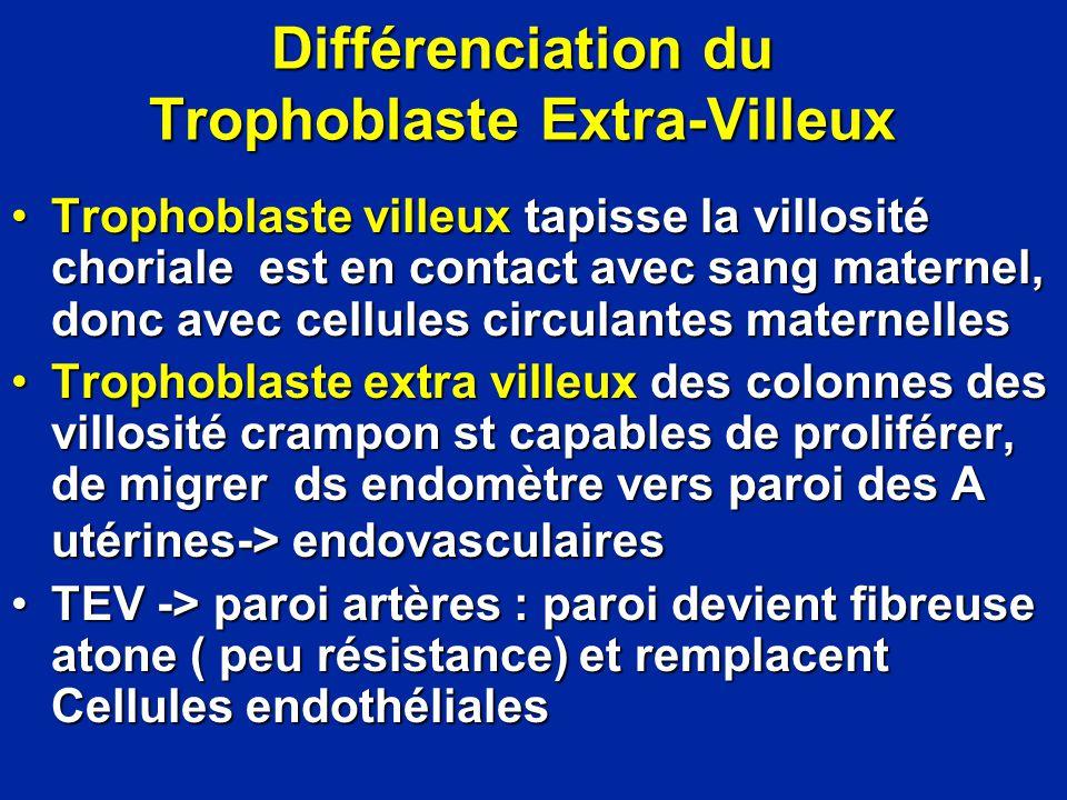 Différenciation du Trophoblaste Extra-Villeux