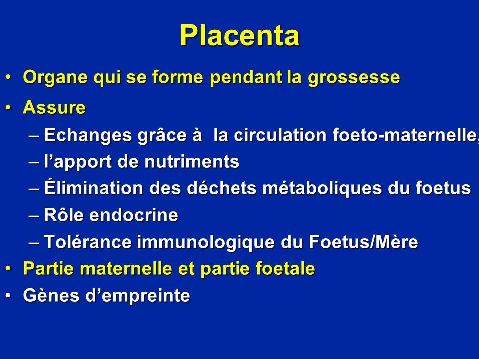 Placenta Organe qui se forme pendant la grossesse Assure