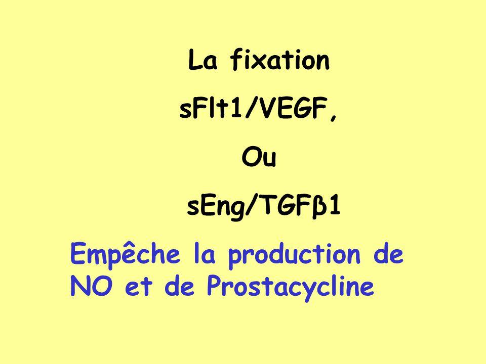 La fixation sFlt1/VEGF, Ou sEng/TGFβ1 Empêche la production de NO et de Prostacycline