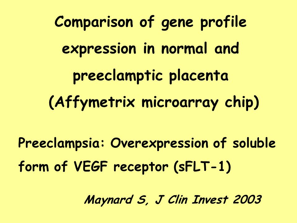 (Affymetrix microarray chip)