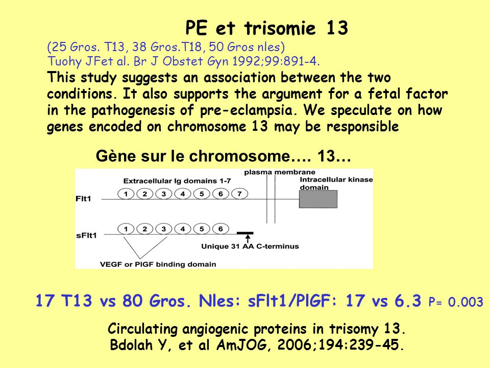 Gène sur le chromosome…. 13…