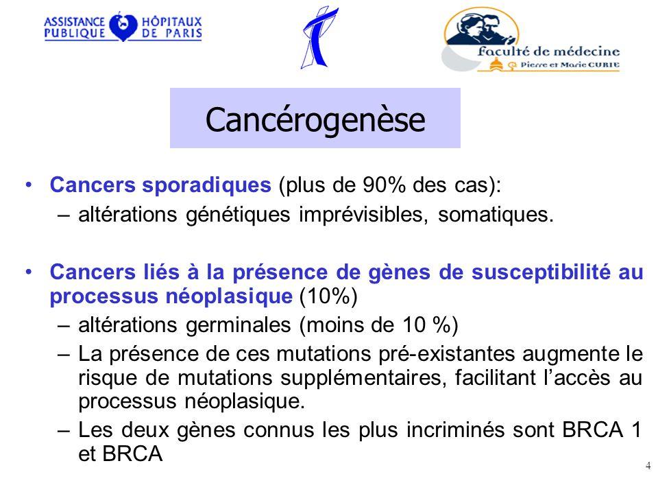 Cancérogenèse Cancers sporadiques (plus de 90% des cas):