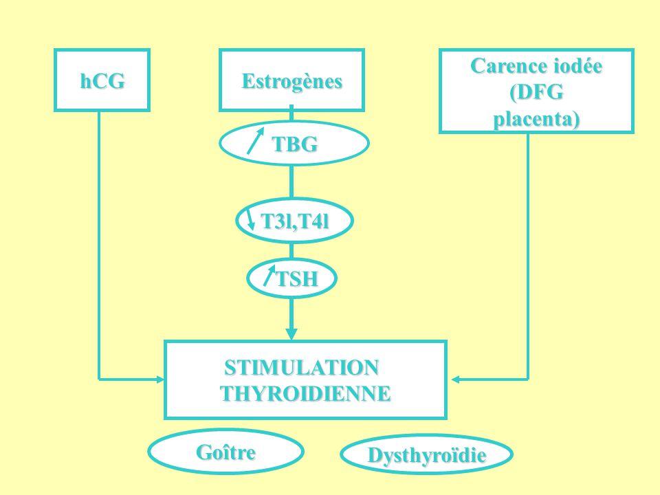 hCG Estrogènes. Carence iodée. (DFG. placenta) TBG. T3l,T4l. TSH. STIMULATION. THYROIDIENNE.
