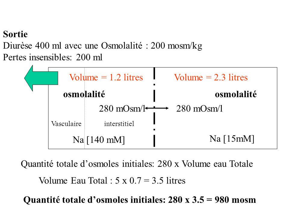 Diurèse 400 ml avec une Osmolalité : 200 mosm/kg
