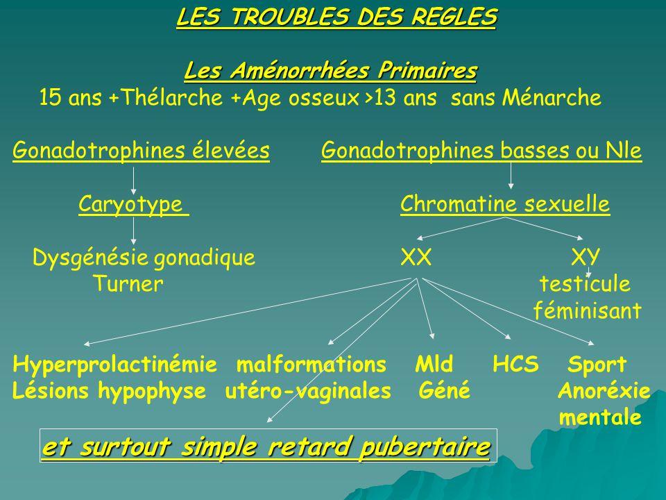 LES TROUBLES DES REGLES