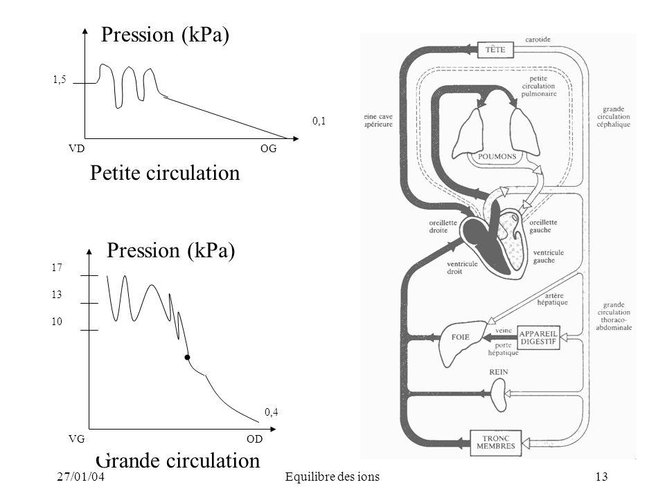Pression (kPa) Petite circulation Pression (kPa) Grande circulation
