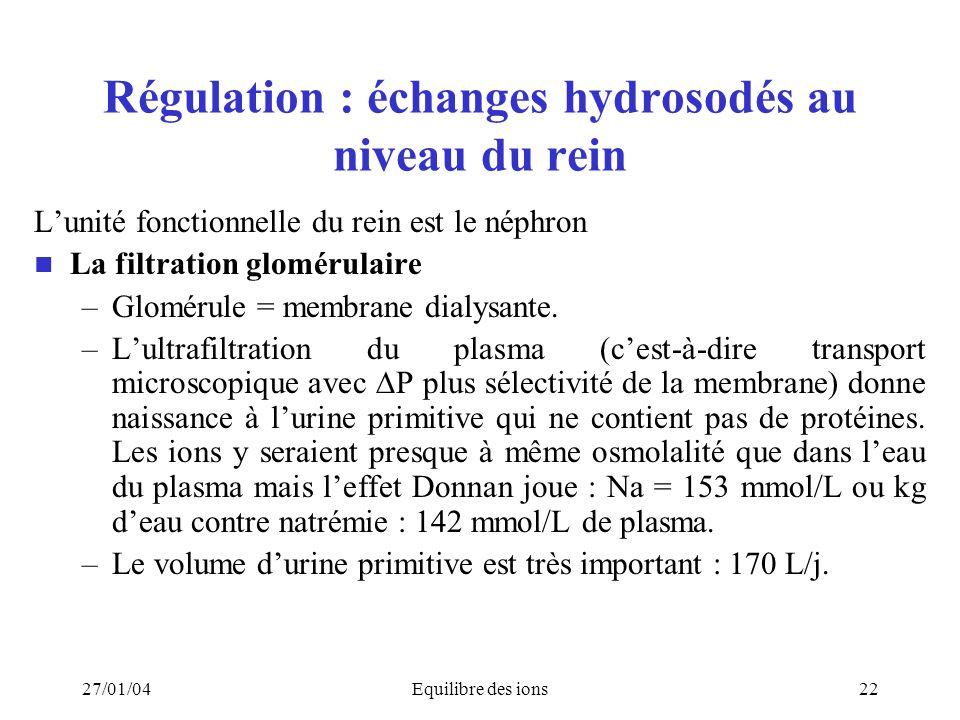Régulation : échanges hydrosodés au niveau du rein