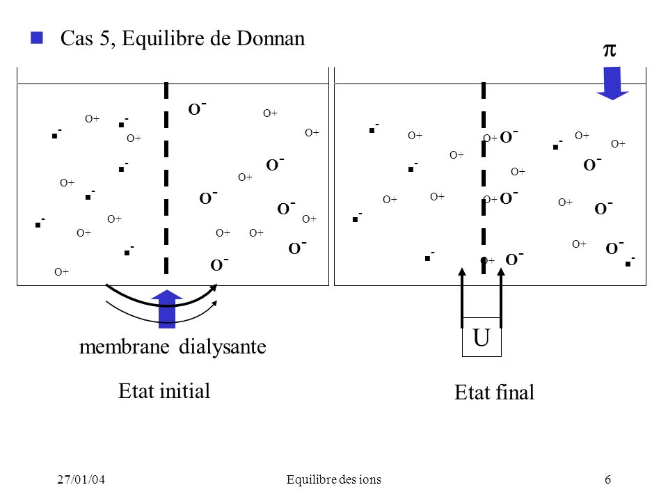 Etat final Cas 5, Equilibre de Donnan  U membrane dialysante