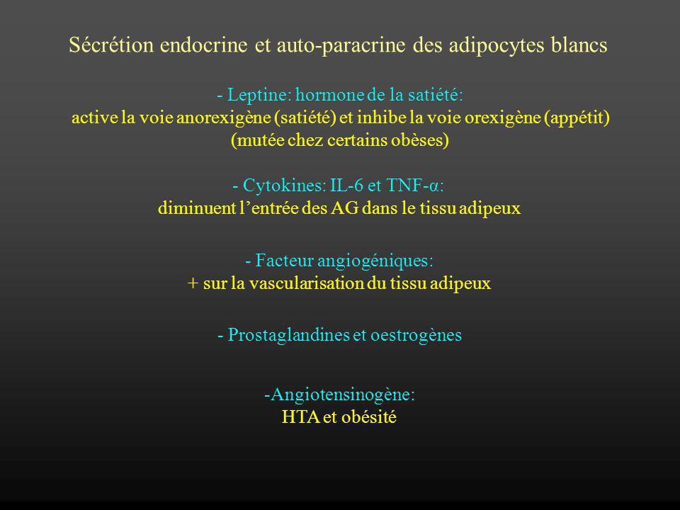 Sécrétion endocrine et auto-paracrine des adipocytes blancs