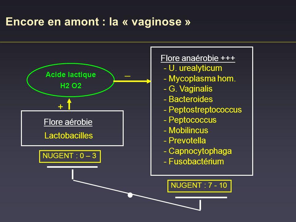 Encore en amont : la « vaginose »