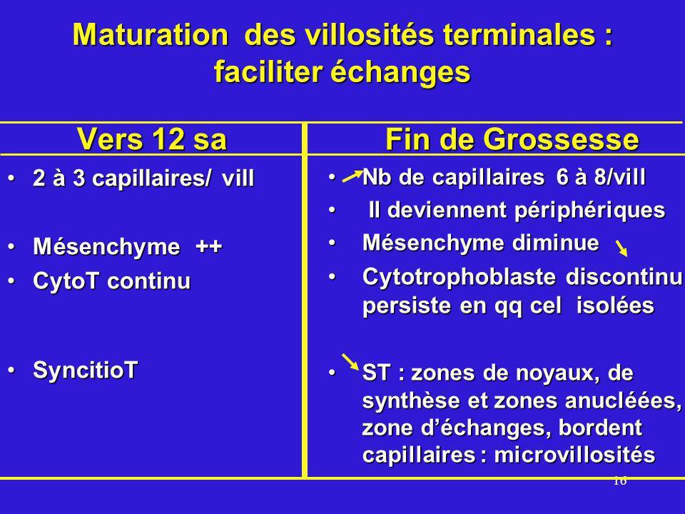 Maturation des villosités terminales : faciliter échanges
