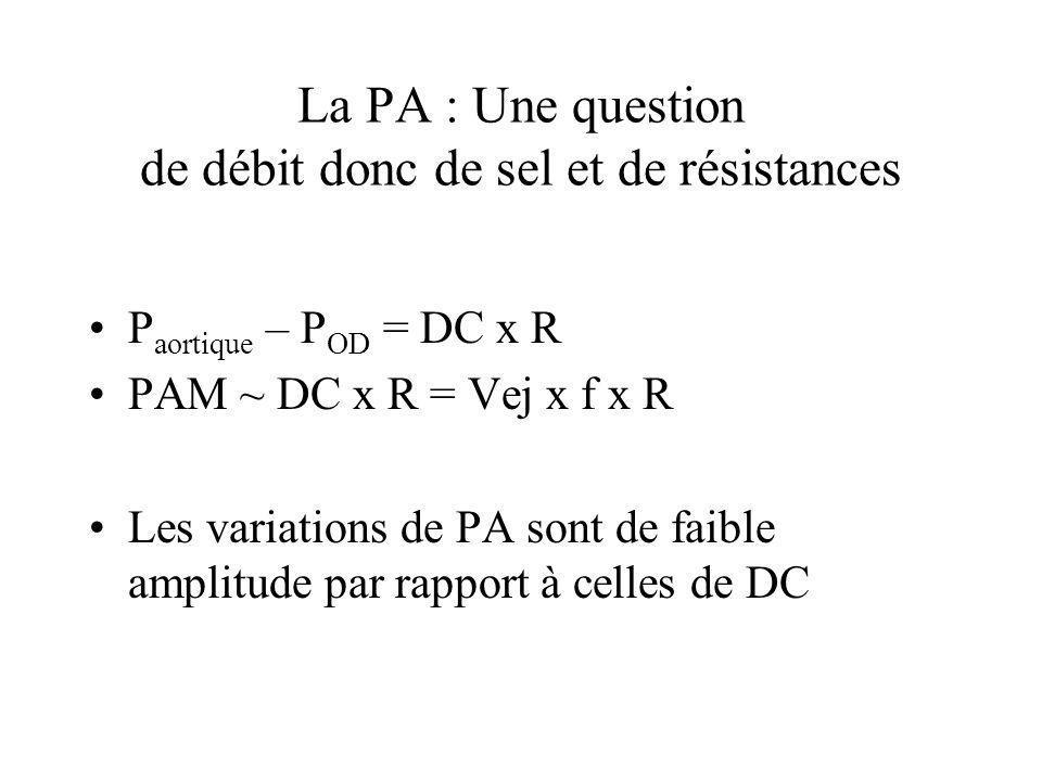 La PA : Une question de débit donc de sel et de résistances