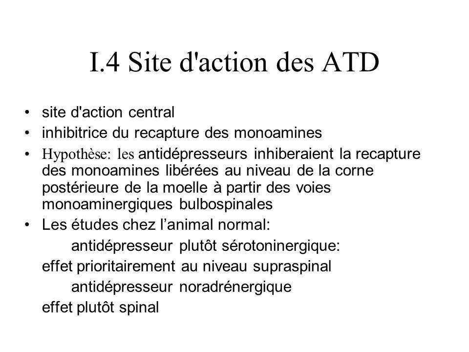 I.4 Site d action des ATD site d action central