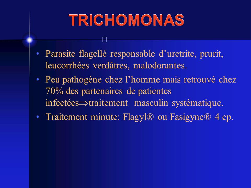 TRICHOMONAS Parasite flagellé responsable d'uretrite, prurit, leucorrhées verdâtres, malodorantes.