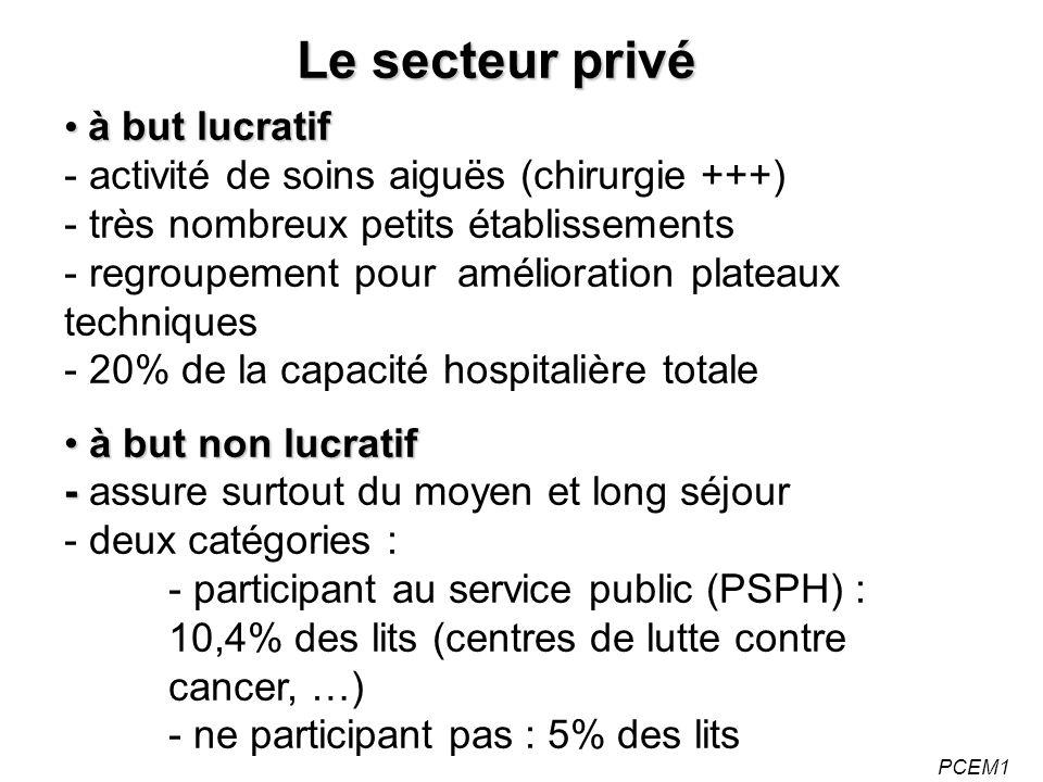 Le secteur privé à but lucratif