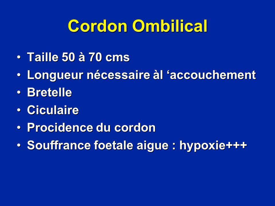 Cordon Ombilical Taille 50 à 70 cms