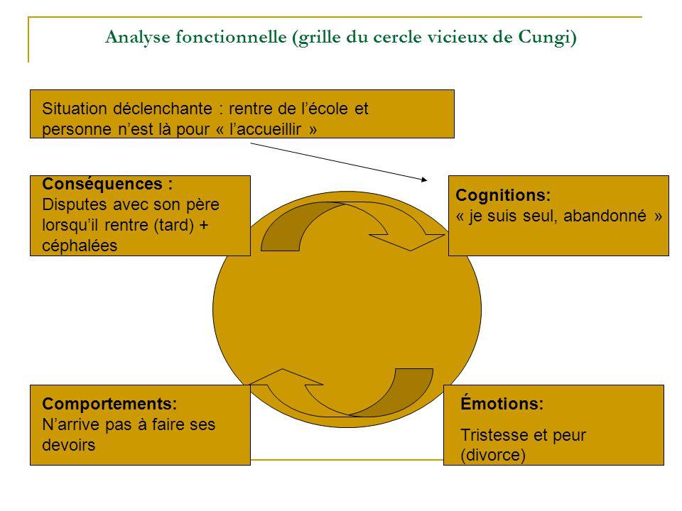 Analyse fonctionnelle (grille du cercle vicieux de Cungi)