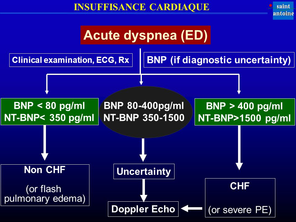 Clinical examination, ECG, Rx BNP (if diagnostic uncertainty)
