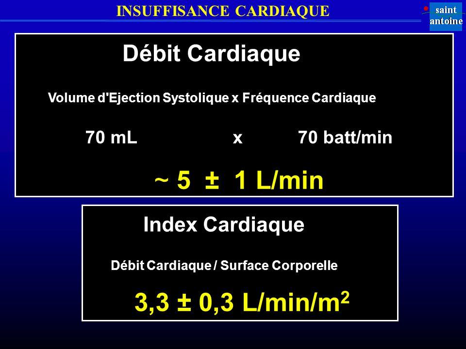 5 ± 1 L/min 3,3 ± 0,3 L/min/m2 Débit Cardiaque Index Cardiaque