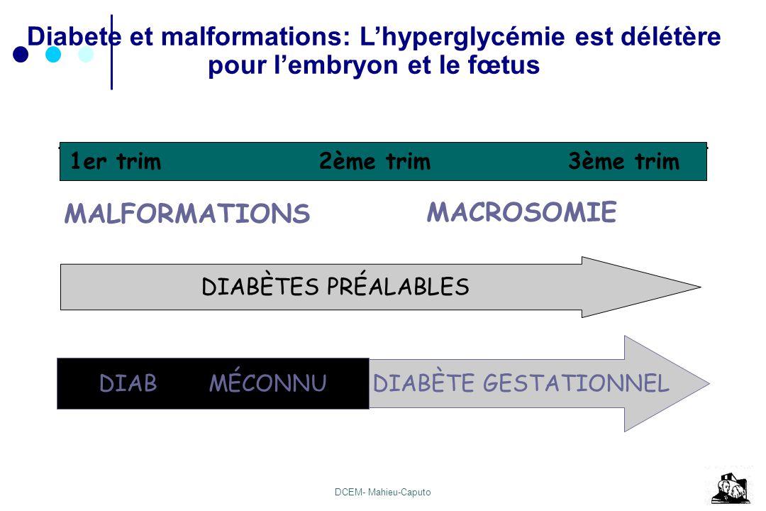 Diabete et malformations: L'hyperglycémie est délétère