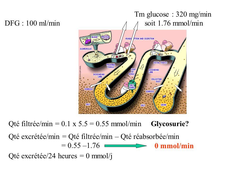 Tm glucose : 320 mg/min soit 1.76 mmol/min. DFG : 100 ml/min. Qté filtrée/min = 0.1 x 5.5 = 0.55 mmol/min.