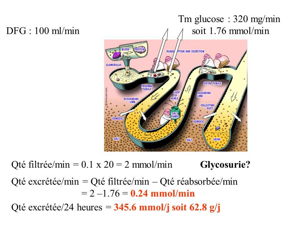 Tm glucose : 320 mg/min soit 1.76 mmol/min. DFG : 100 ml/min. Qté filtrée/min = 0.1 x 20 = 2 mmol/min.