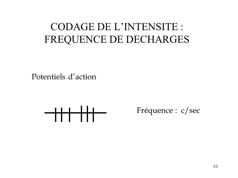 CODAGE DE L'INTENSITE : FREQUENCE DE DECHARGES