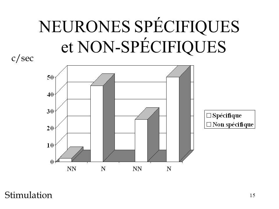 NEURONES SPÉCIFIQUES et NON-SPÉCIFIQUES