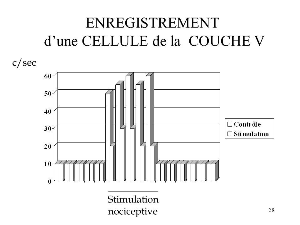 ENREGISTREMENT d'une CELLULE de la COUCHE V