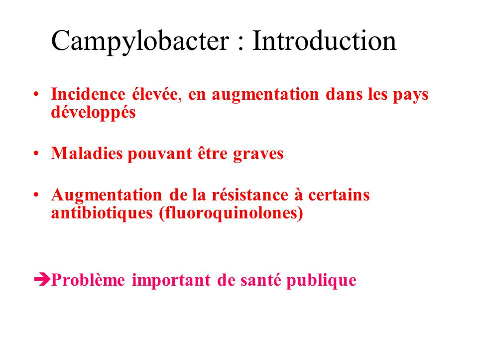 Campylobacter : Introduction