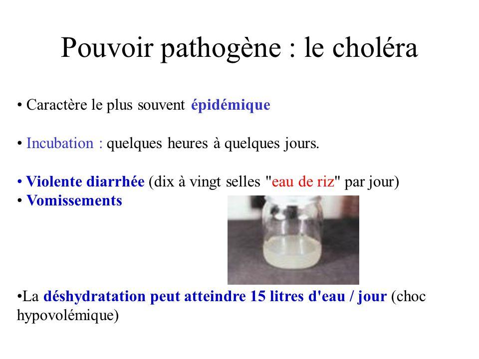 Pouvoir pathogène : le choléra