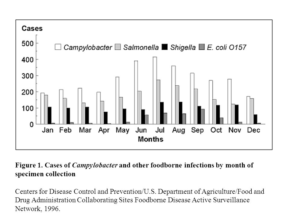 Figure 1. Cases of Campylobacter and other foodborne infections by month of specimen collection