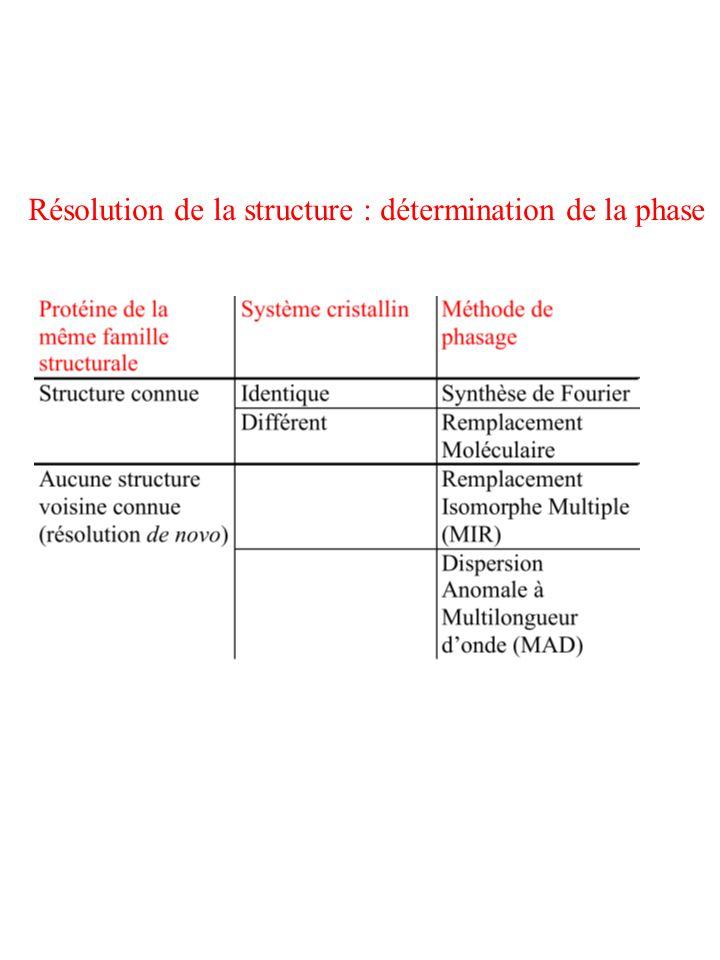 Résolution de la structure : détermination de la phase