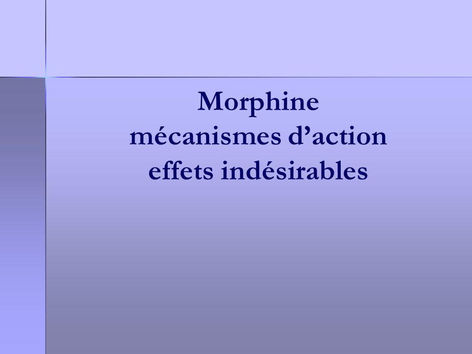 Morphine mécanismes d'action effets indésirables