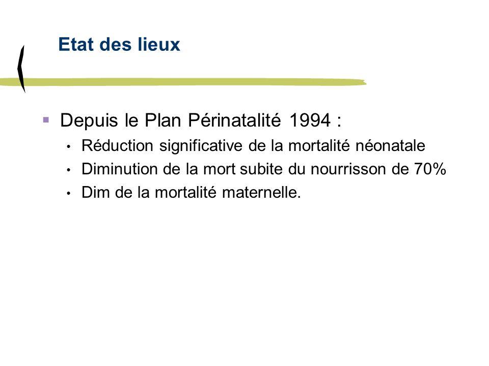 Depuis le Plan Périnatalité 1994 :