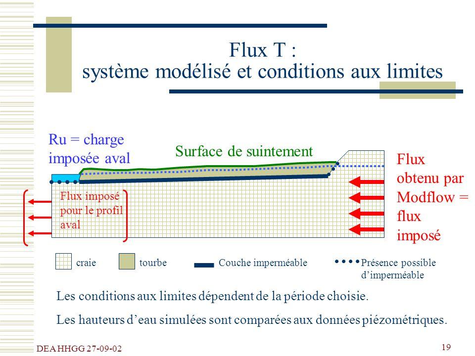 Flux T : système modélisé et conditions aux limites