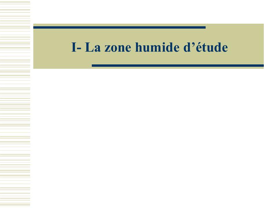 I- La zone humide d'étude
