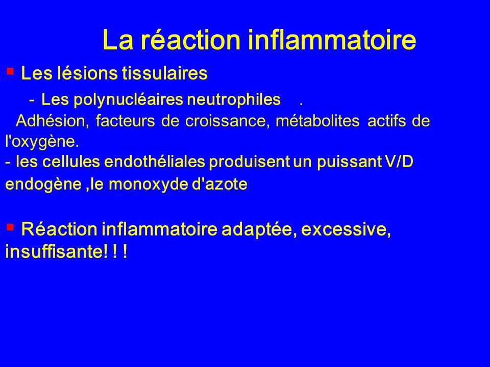 La réaction inflammatoire