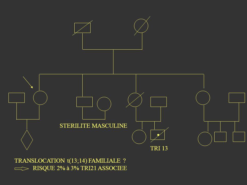. STERILITE MASCULINE TRI 13 TRANSLOCATION t(13;14) FAMILIALE