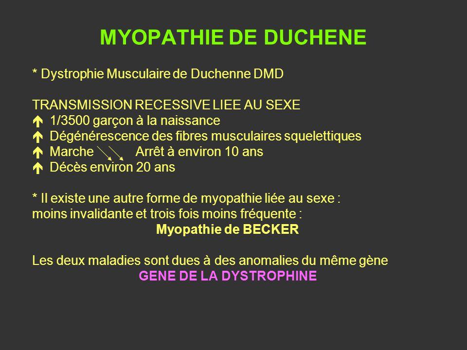 MYOPATHIE DE DUCHENE * Dystrophie Musculaire de Duchenne DMD