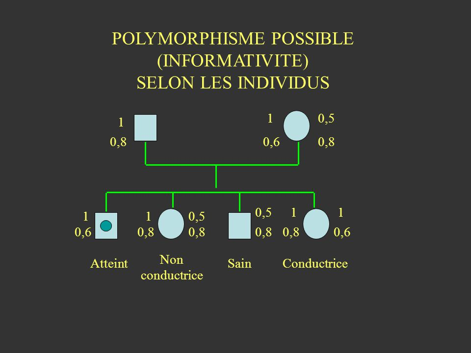 POLYMORPHISME POSSIBLE