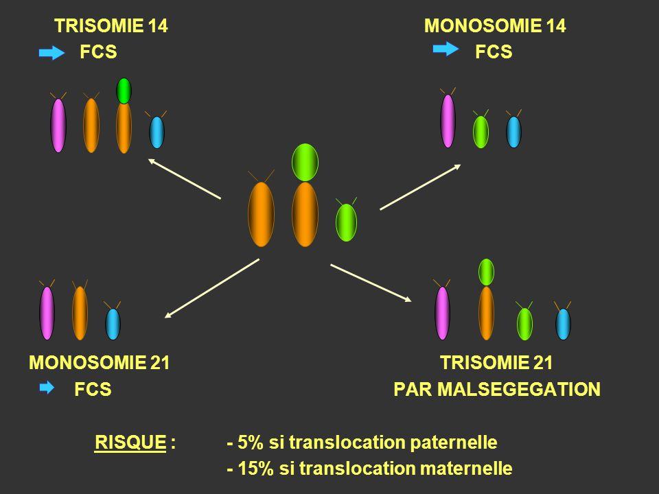 TRISOMIE 14 MONOSOMIE 14 FCS FCS. MONOSOMIE 21 TRISOMIE 21. FCS PAR MALSEGEGATION.