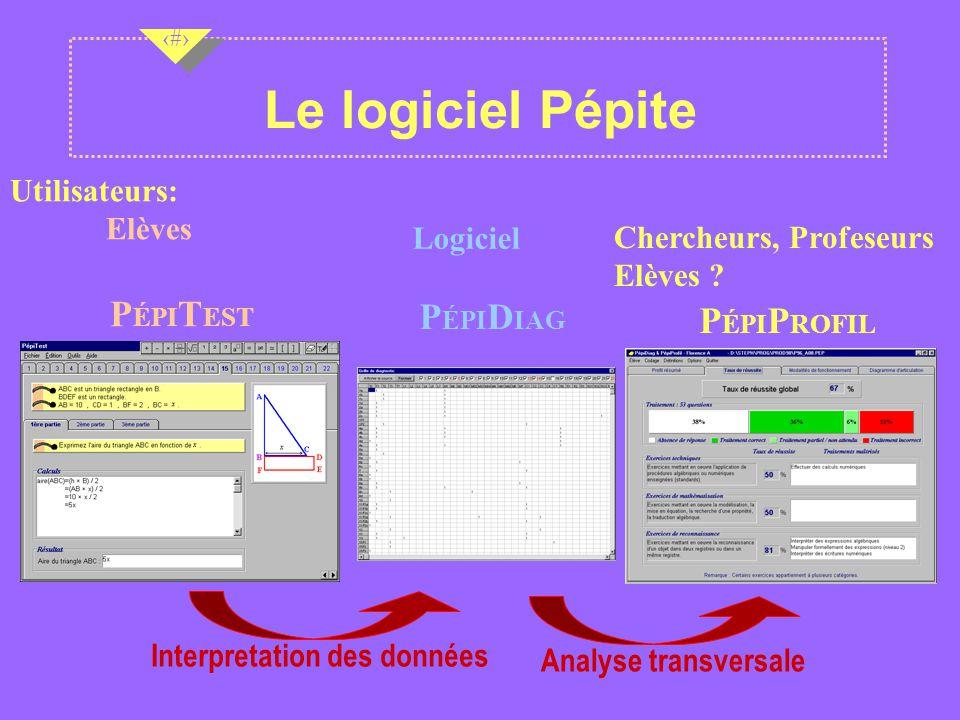 Le logiciel Pépite PÉPITEST PÉPIDIAG PÉPIPROFIL Utilisateurs: Elèves