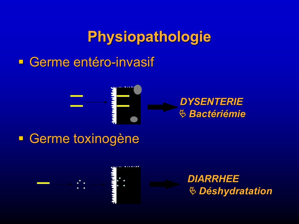 Physiopathologie Germe entéro-invasif Germe toxinogène DYSENTERIE