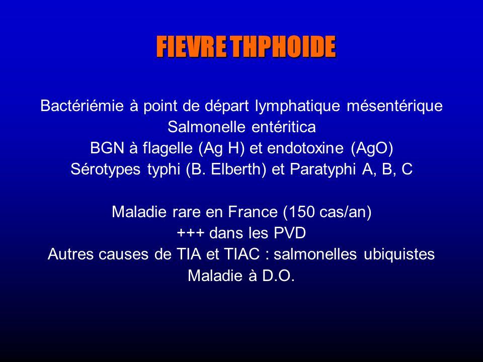 FIEVRE THPHOIDE Bactériémie à point de départ lymphatique mésentérique