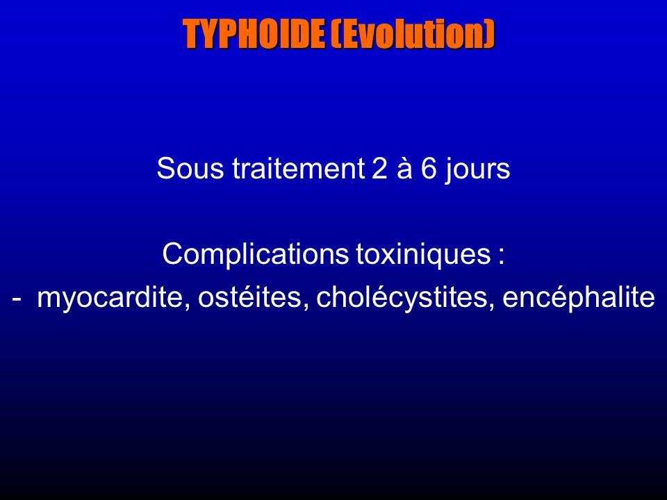 TYPHOIDE (Evolution) Sous traitement 2 à 6 jours