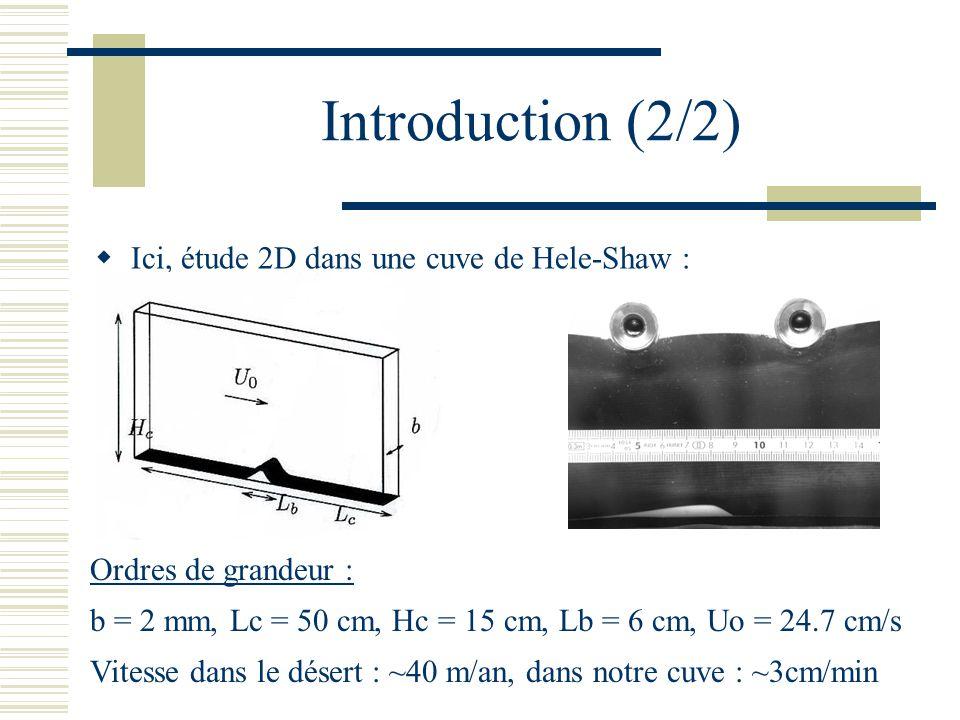 Introduction (2/2) Ici, étude 2D dans une cuve de Hele-Shaw :