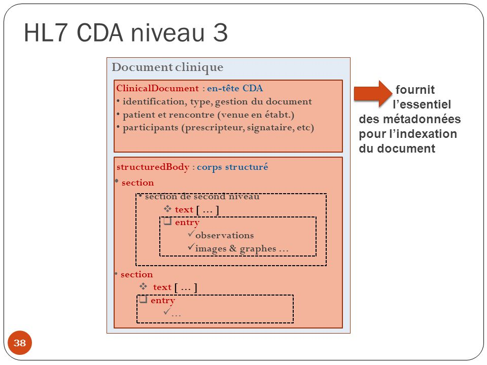 HL7 CDA niveau 3 Document clinique section fournit