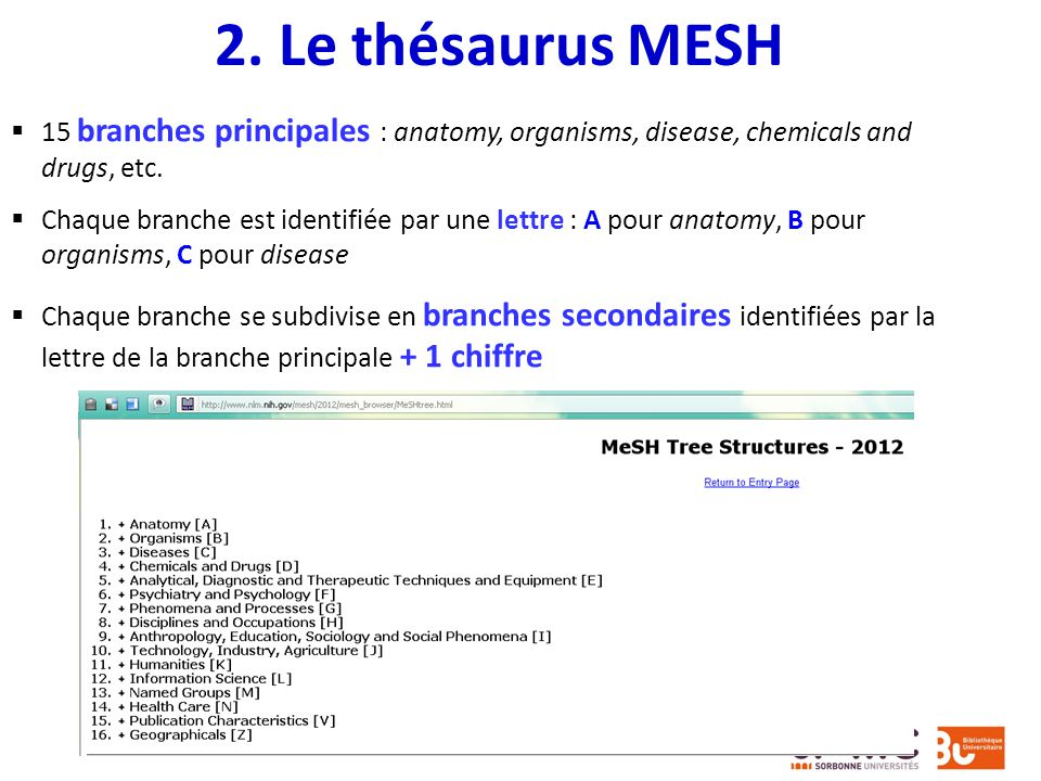 2. Le thésaurus MESH 15 branches principales : anatomy, organisms, disease, chemicals and drugs, etc.